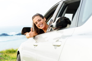 Nachweis durch Grüne Karte: Für das Auto ist eine Versicherung abgeschlossen!