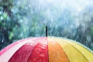 Die Kaskoversicherung darf Sie trotz Mitschuld bei einem Unfall meist nicht im Regen stehen lassen.