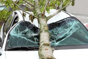 Kfz-Versicherung: Führt höhere Gewalt bei Ihrem Auto zum Versicherungsfall, springt nur die Kasko ein.